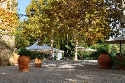 Weingut mit Ferienwohnungen in der Toskana