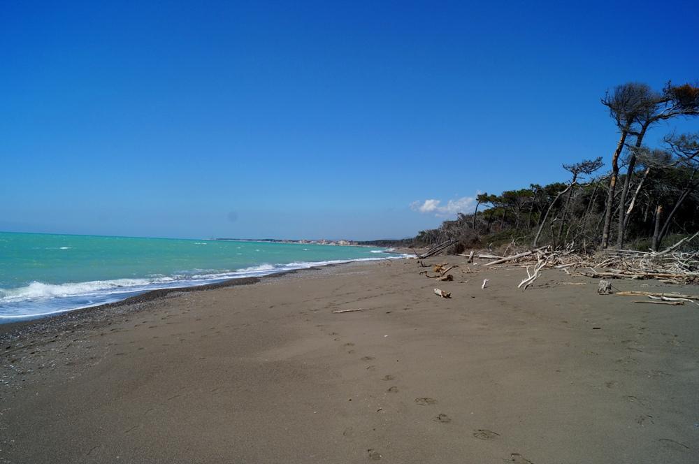 Naturstrand Cecina Süd, Sandstrand in der Toskana
